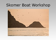 Skomer Photography Boat-based Workshops